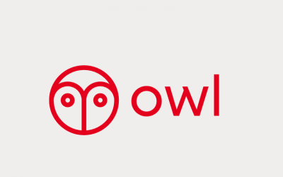 Holt Highlight: Owl